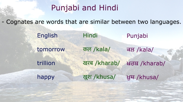 Punjabi 40.jpg